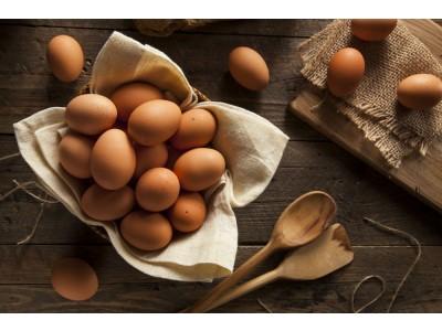 Slepačie vajcia L