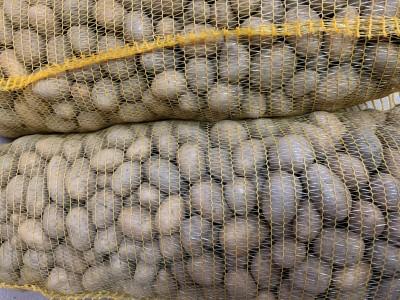 Sadbové zemiaky žlté